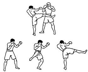Круговой удар правой голенью в корпус