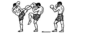 Защита от кругового удара левой голенью в голову