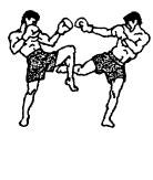 Защита от кругового удара правой голенью в бедро