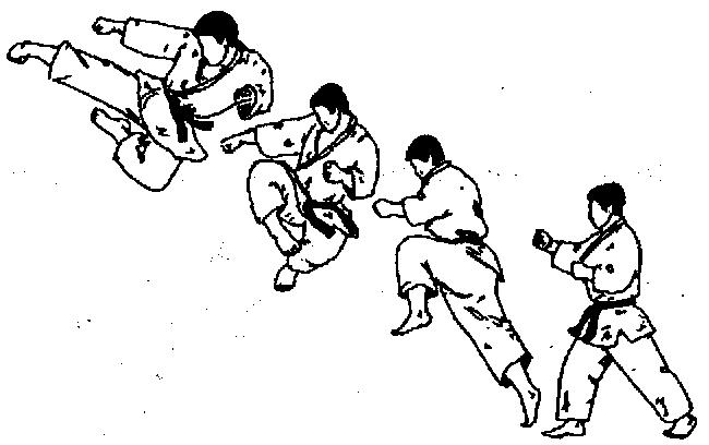 Маэ тоби гэри (проямой удар ногой в прыжке)