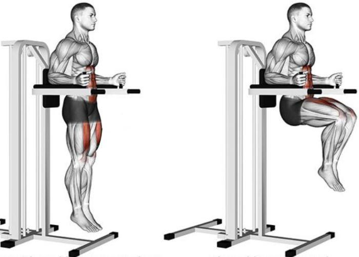 Подъем коленей на весу