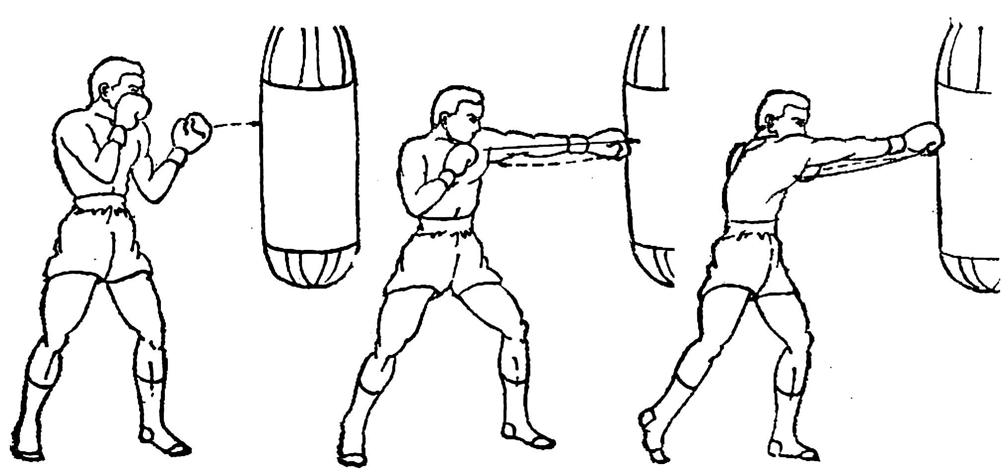 движение бокса картинки акцентом одной